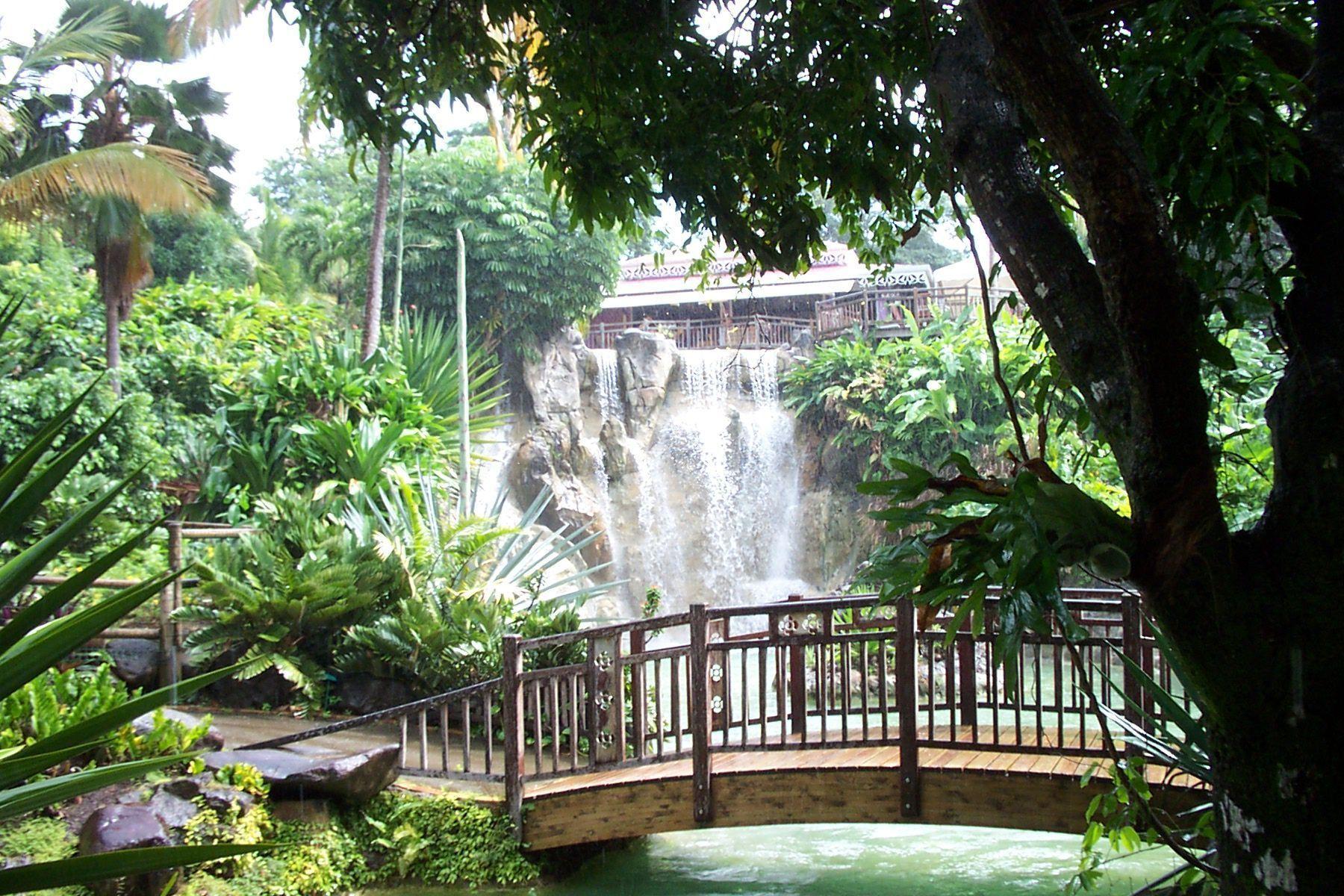Bienvenue sur mon blog for Jardin botanique guadeloupe
